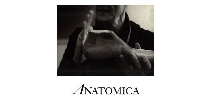 ANATOMICA