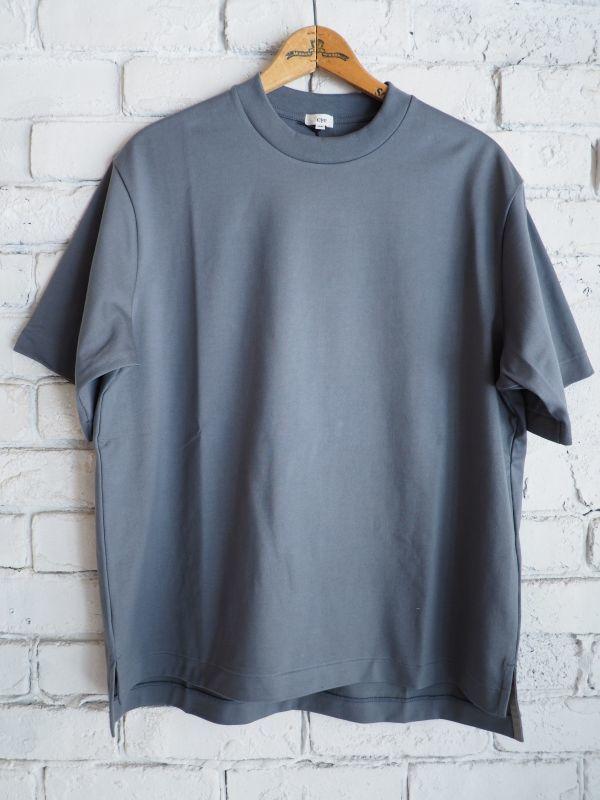 画像1: Scye (レディース) ロイヤルスビンビッグTシャツ (1)